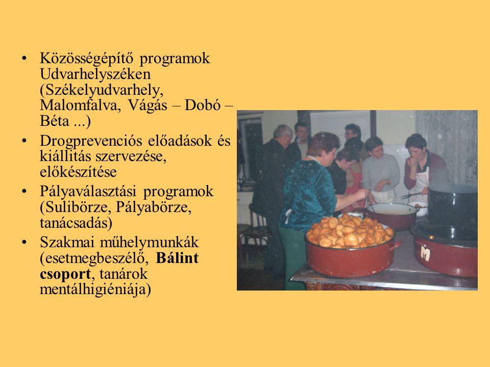 Közösségépítő programok Udvarhelyszéken (Székelyudvarhely, Malomfalva, Vágás – Dobó – Béta ...)