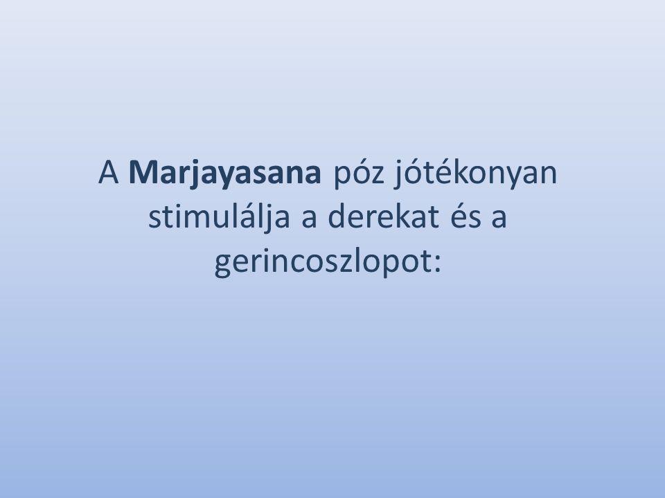 A Marjayasana póz jótékonyan stimulálja a derekat és a gerincoszlopot: