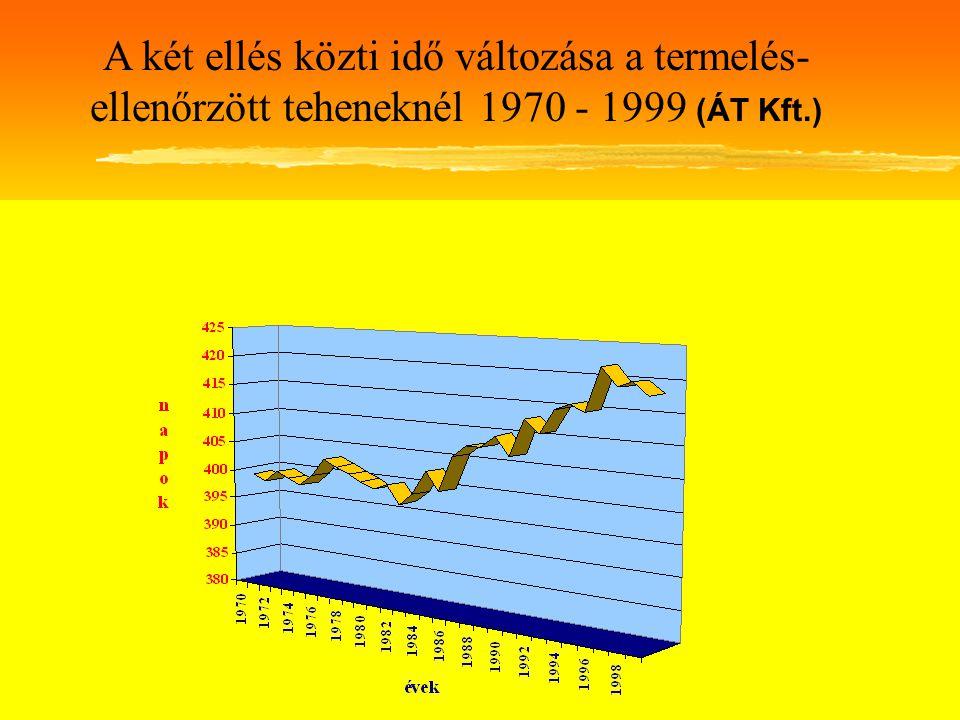 A két ellés közti idő változása a termelés-ellenőrzött teheneknél 1970 - 1999 (ÁT Kft.)