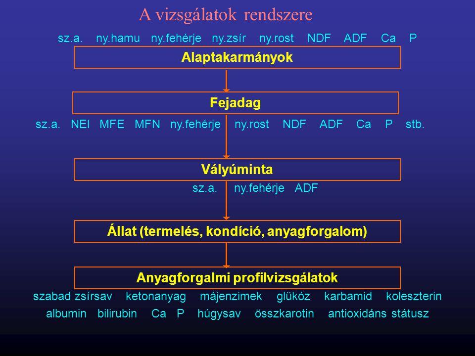 A vizsgálatok rendszere
