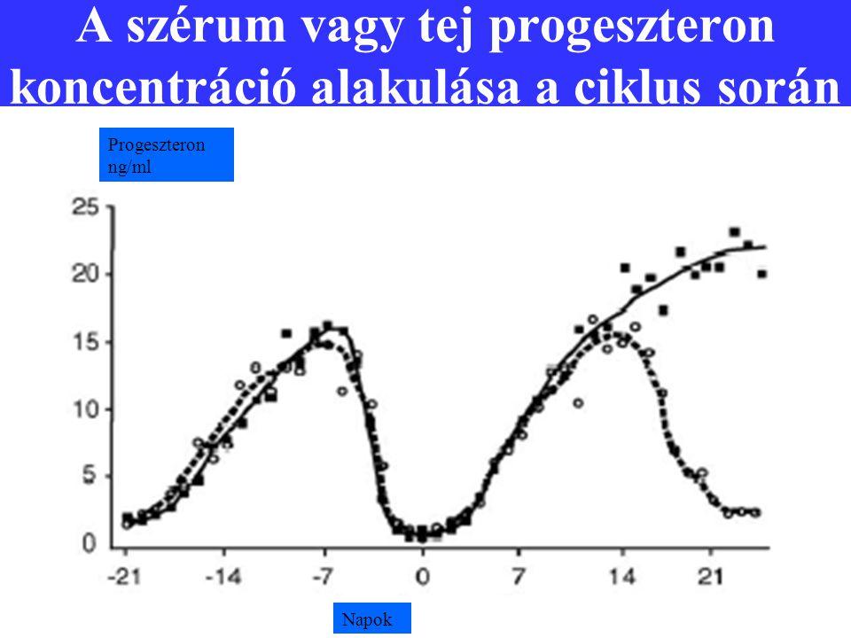 A szérum vagy tej progeszteron koncentráció alakulása a ciklus során