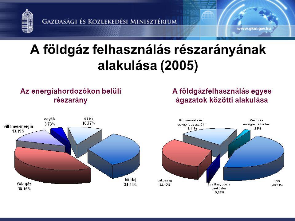 A földgáz felhasználás részarányának alakulása (2005)