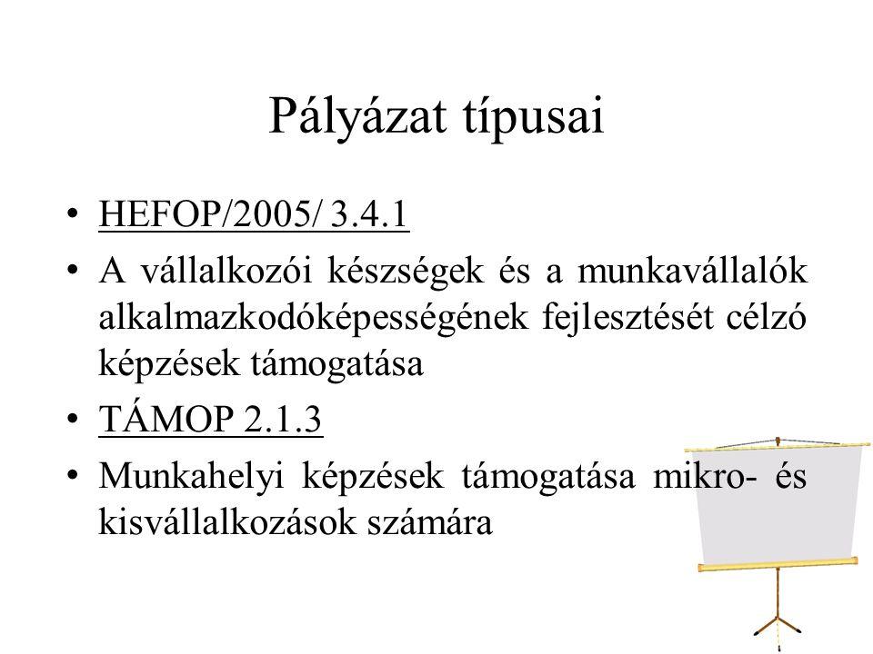 Pályázat típusai HEFOP/2005/ 3.4.1