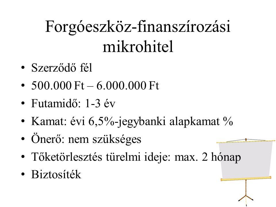 Forgóeszköz-finanszírozási mikrohitel
