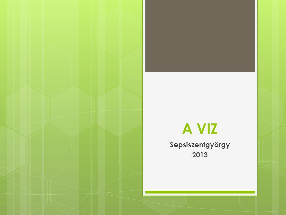 A VIZ Sepsiszentgyörgy 2013