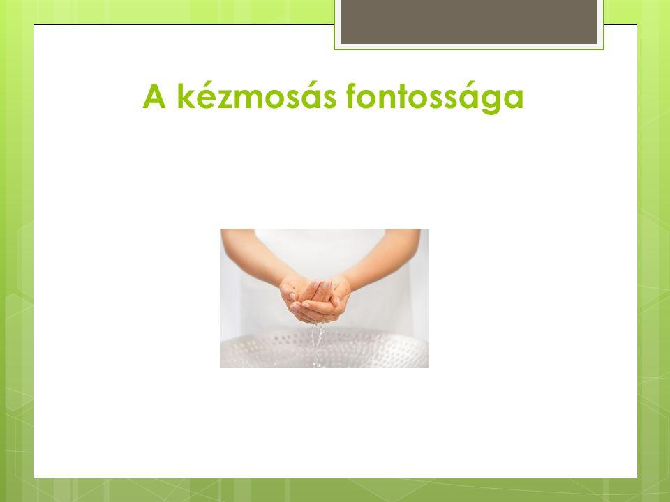 A kézmosás fontossága