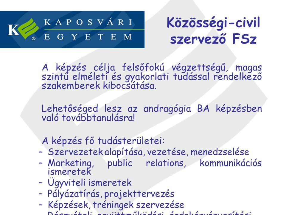 Közösségi-civil szervező FSz