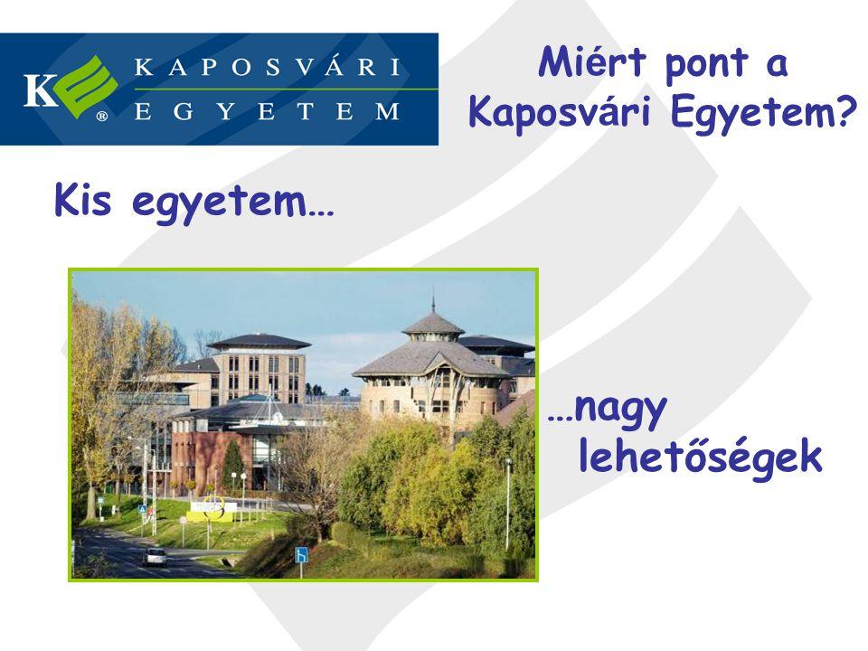 Miért pont a Kaposvári Egyetem