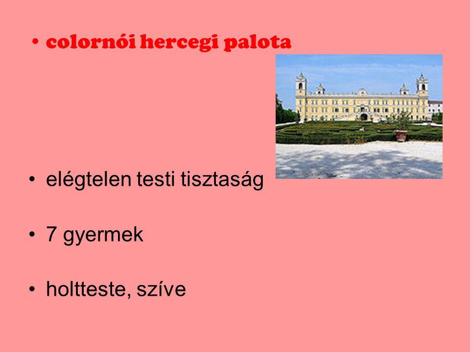 colornói hercegi palota
