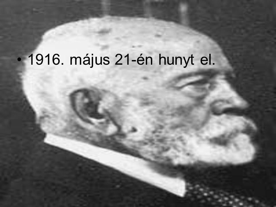 1916. május 21-én hunyt el.
