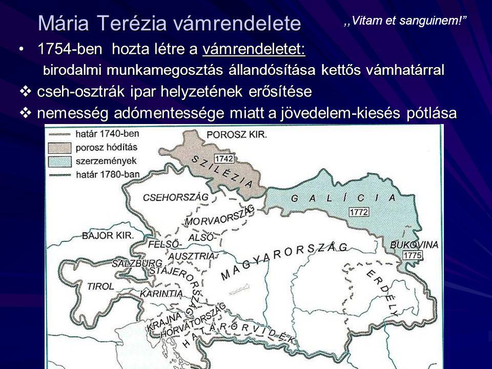 Mária Terézia vámrendelete