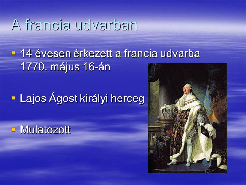 A francia udvarban 14 évesen érkezett a francia udvarba 1770. május 16-án. Lajos Ágost királyi herceg.