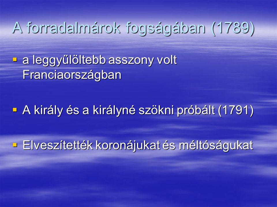 A forradalmárok fogságában (1789)