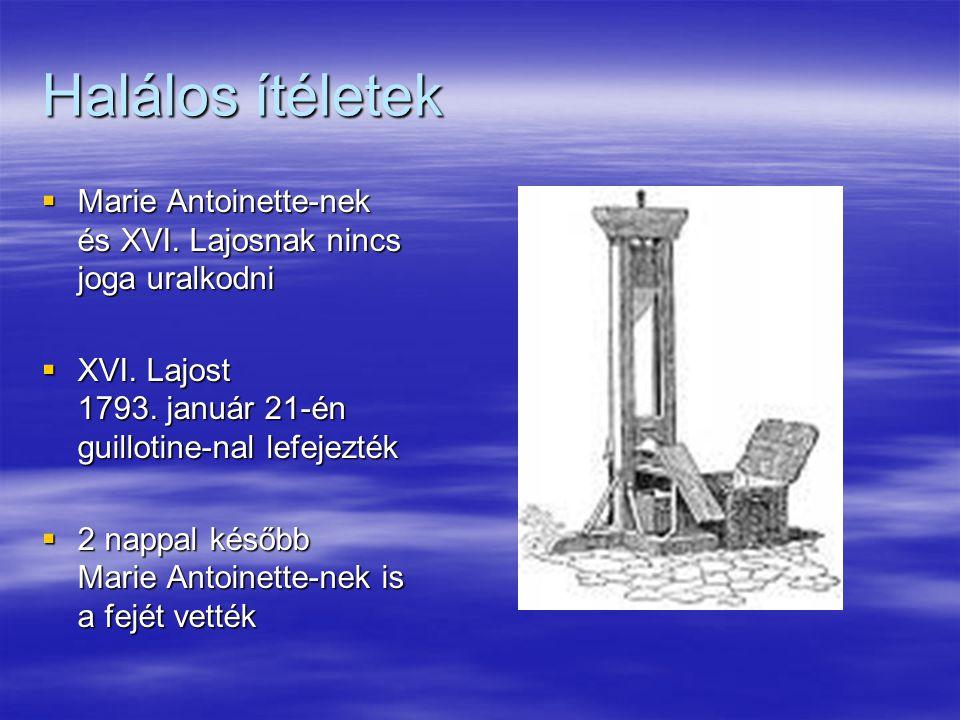 Halálos ítéletek Marie Antoinette-nek és XVI. Lajosnak nincs joga uralkodni. XVI. Lajost 1793. január 21-én guillotine-nal lefejezték.