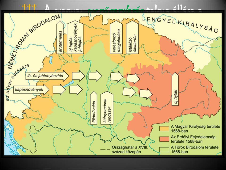 III. A magyar mezőgazdaság talpra állása a XVIII. században