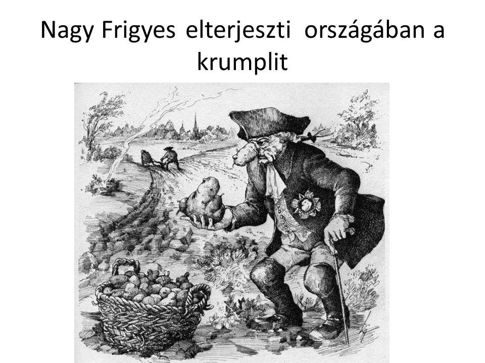 Nagy Frigyes elterjeszti országában a krumplit
