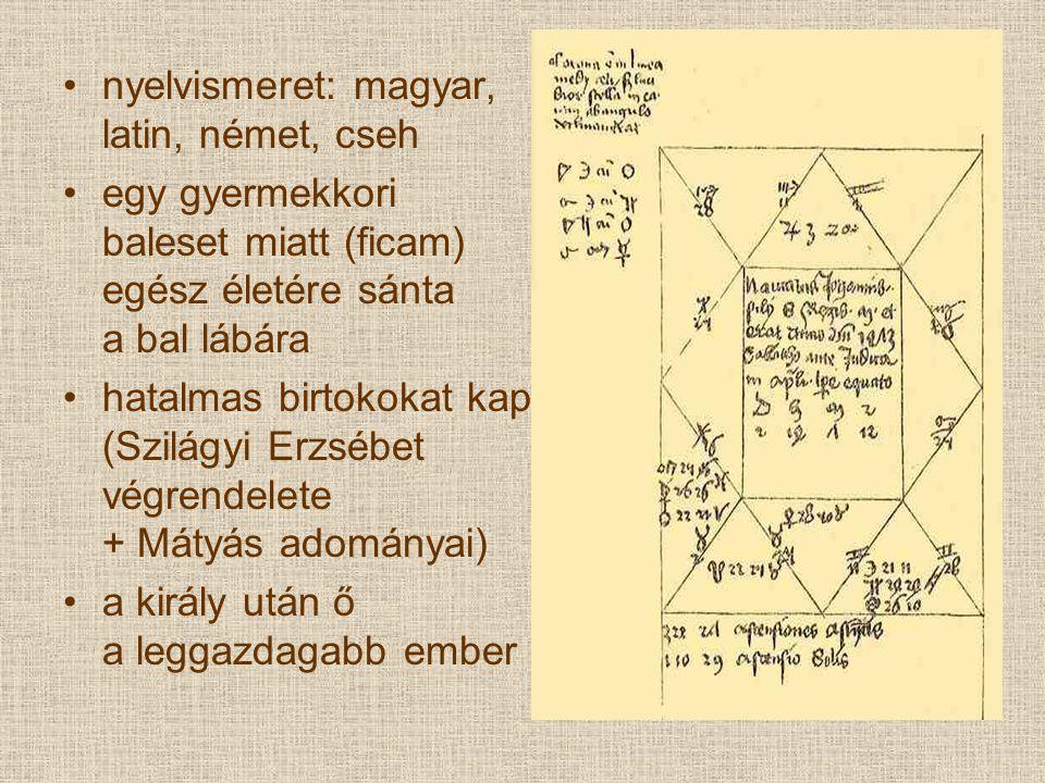 nyelvismeret: magyar, latin, német, cseh