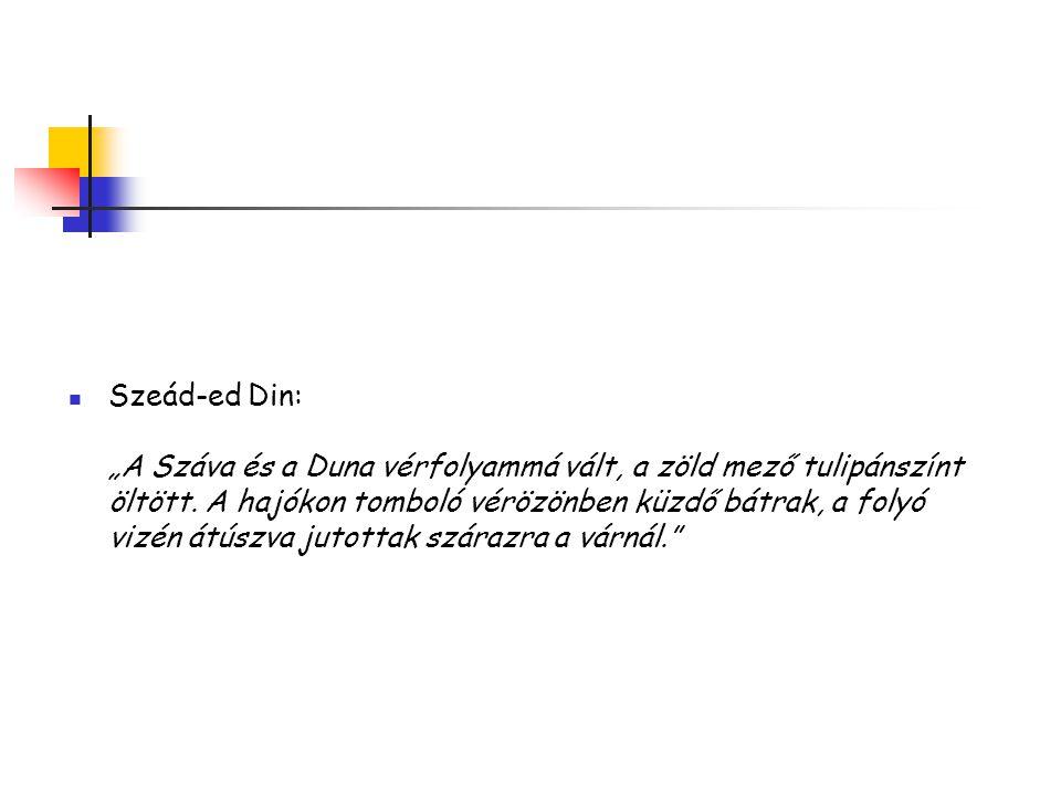 """Szeád-ed Din: """"A Száva és a Duna vérfolyammá vált, a zöld mező tulipánszínt öltött."""