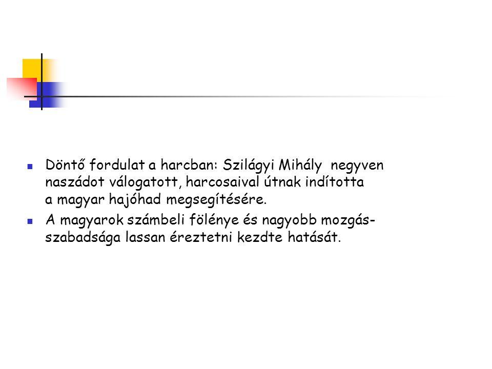 Döntő fordulat a harcban: Szilágyi Mihály negyven naszádot válogatott, harcosaival útnak indította a magyar hajóhad megsegítésére.