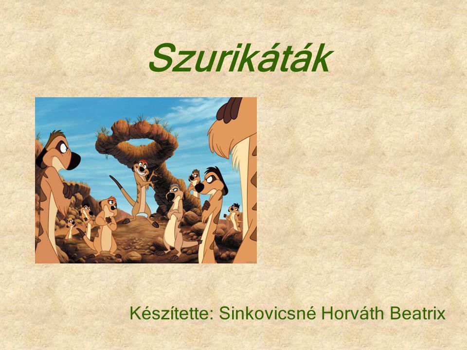 Szurikáták Készítette: Sinkovicsné Horváth Beatrix