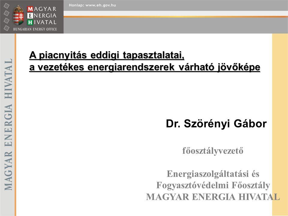 Dr. Szörényi Gábor Dr. Szörényi Gábor