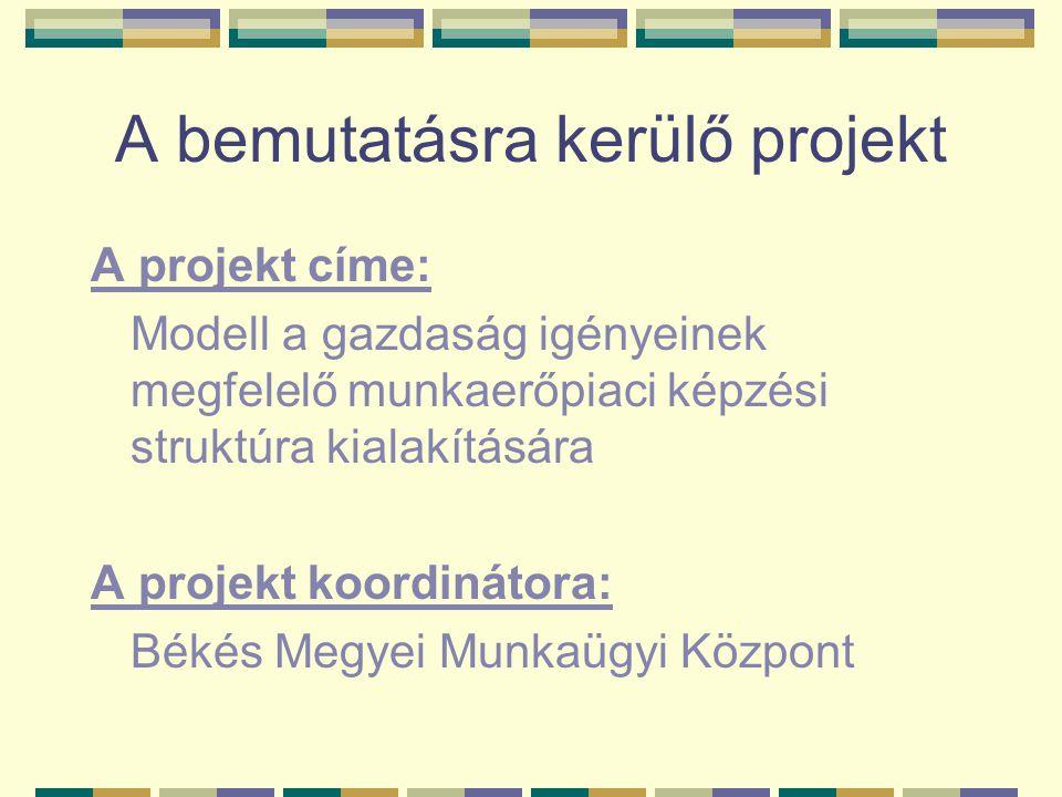 A bemutatásra kerülő projekt
