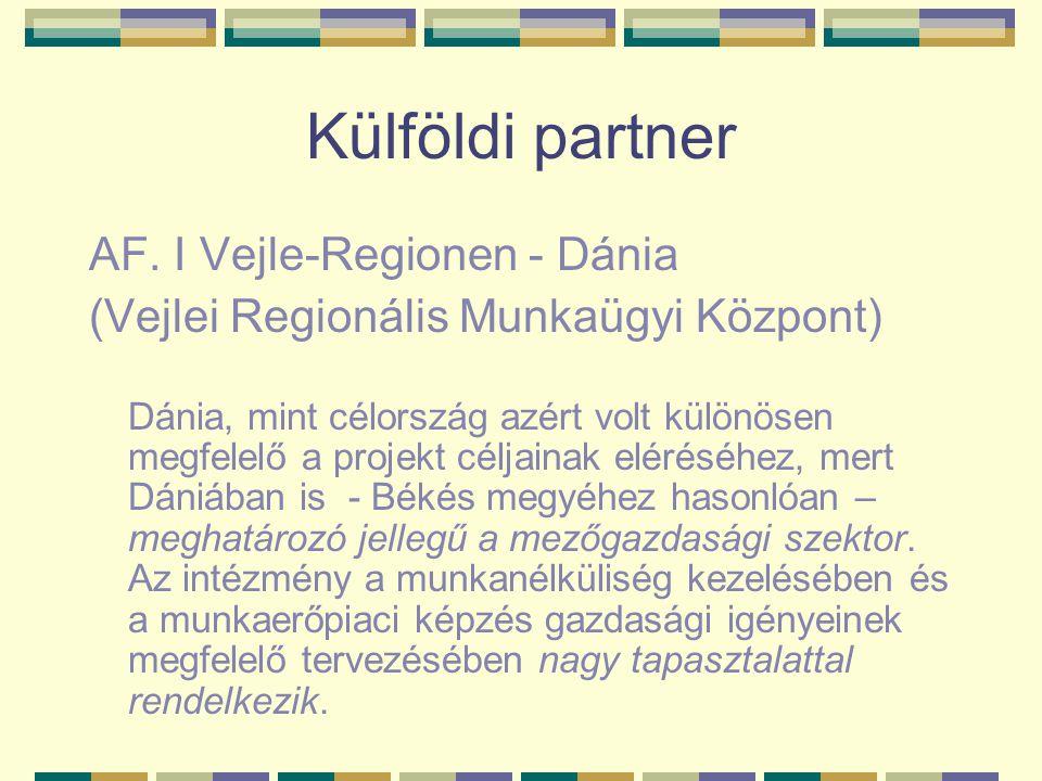 Külföldi partner AF. I Vejle-Regionen - Dánia