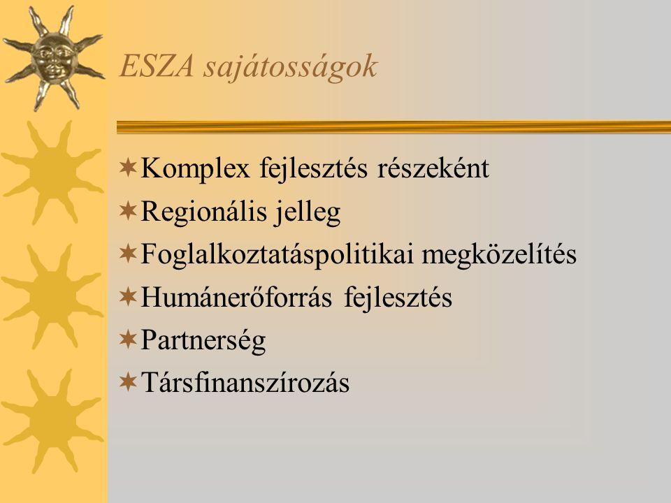 ESZA sajátosságok Komplex fejlesztés részeként Regionális jelleg