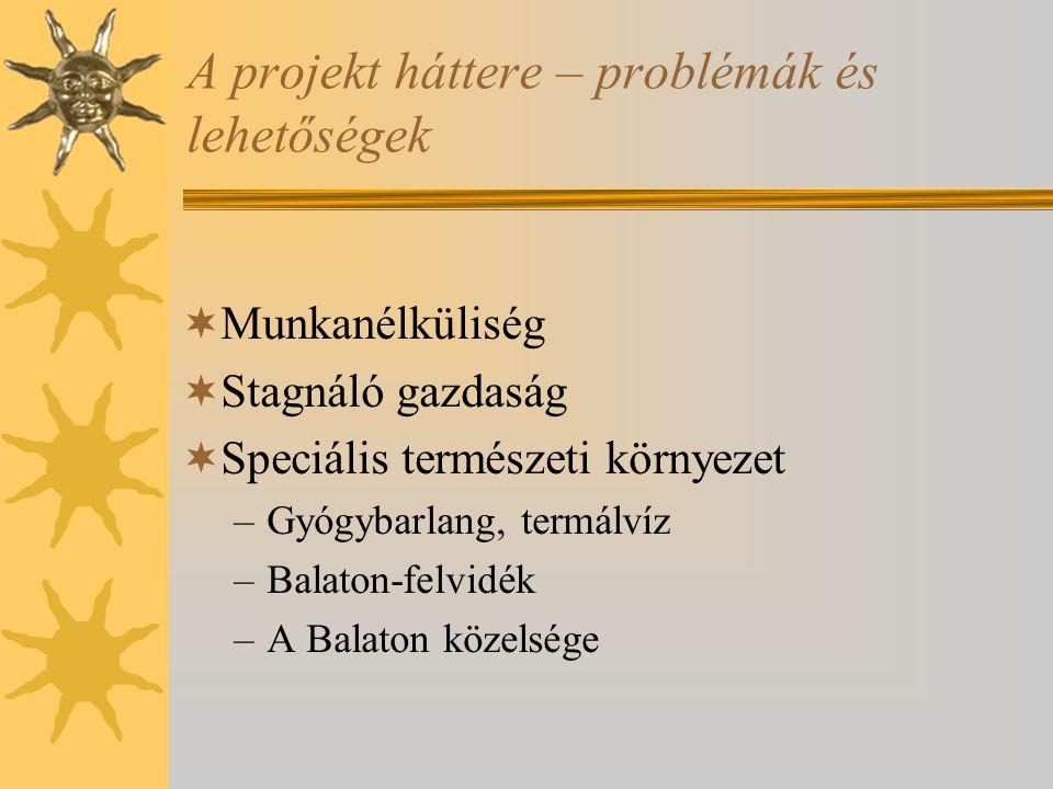 A projekt háttere – problémák és lehetőségek