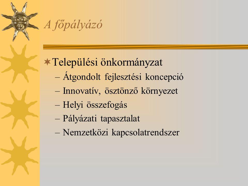 A főpályázó Települési önkormányzat Átgondolt fejlesztési koncepció