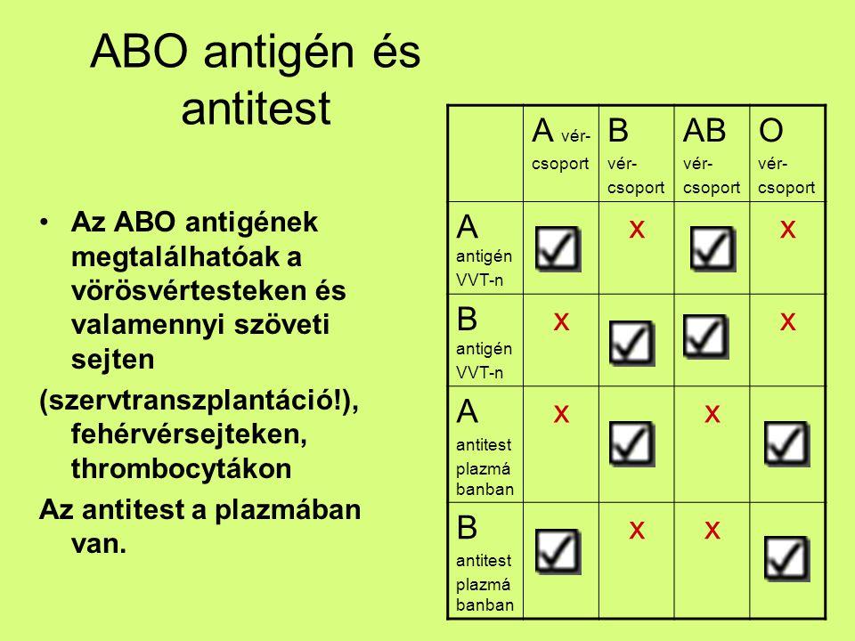 ABO antigén és antitest