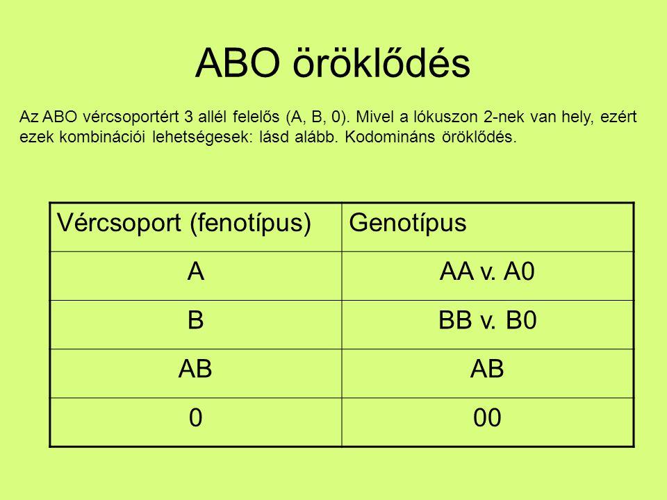 ABO öröklődés Vércsoport (fenotípus) Genotípus A AA v. A0 B BB v. B0