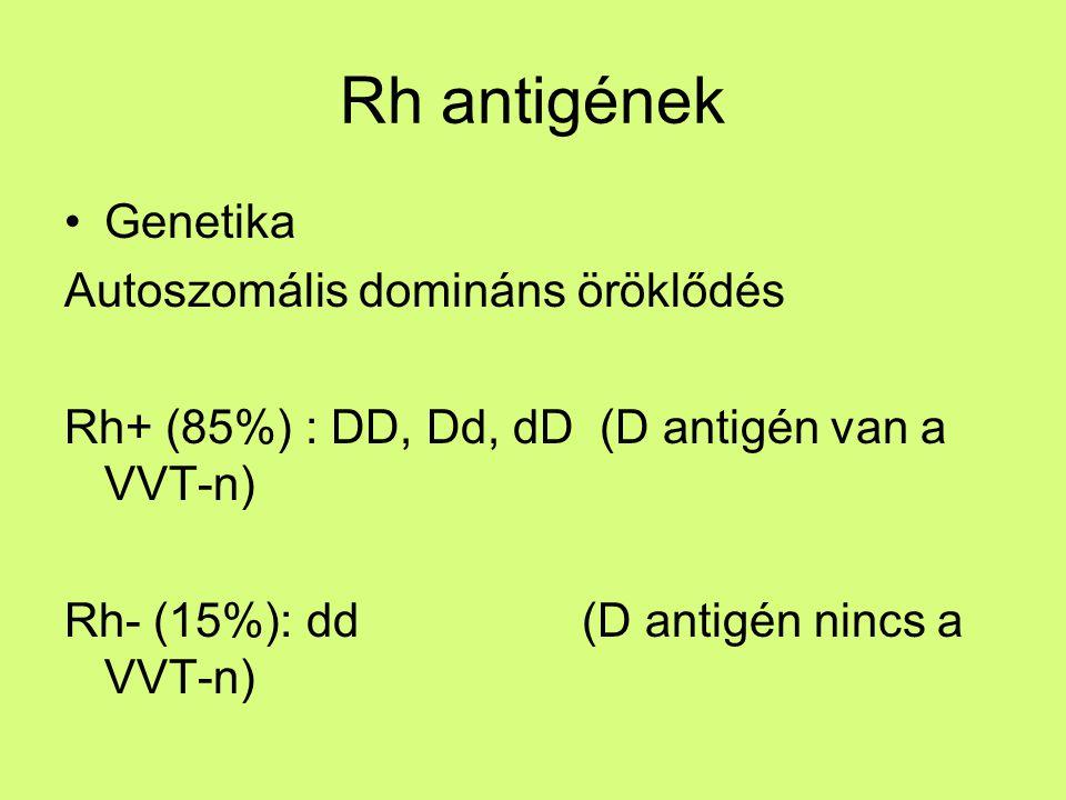 Rh antigének Genetika Autoszomális domináns öröklődés