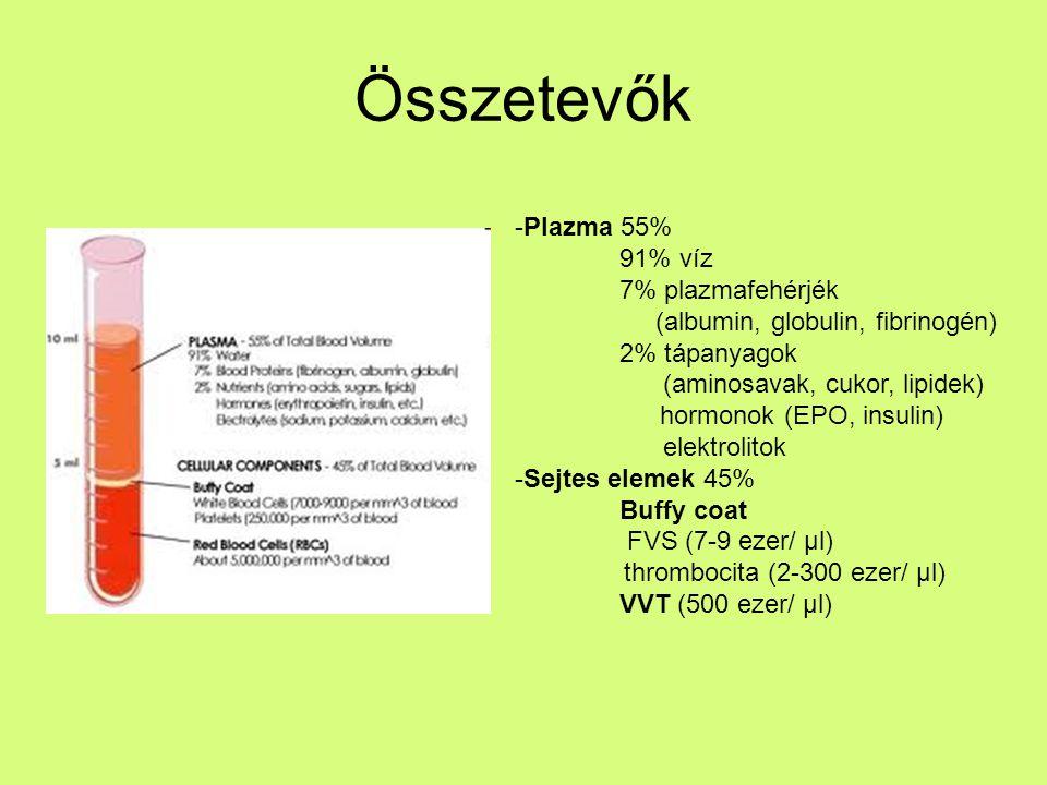 Összetevők -Plazma 55% 91% víz 7% plazmafehérjék