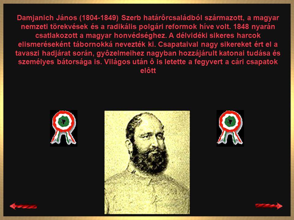 Damjanich János (1804-1849) Szerb határôrcsaládból származott, a magyar nemzeti törekvések és a radikális polgári reformok híve volt.