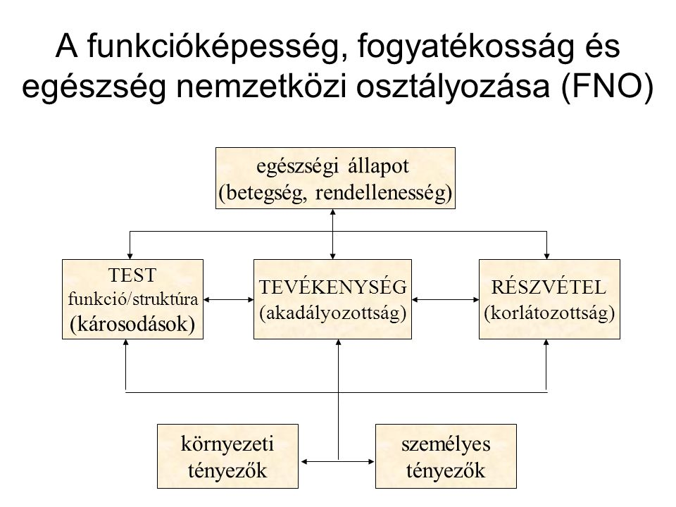 egészségi állapot (betegség, rendellenesség)