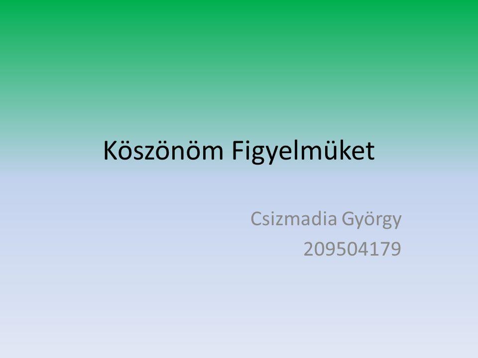 Köszönöm Figyelmüket Csizmadia György 209504179