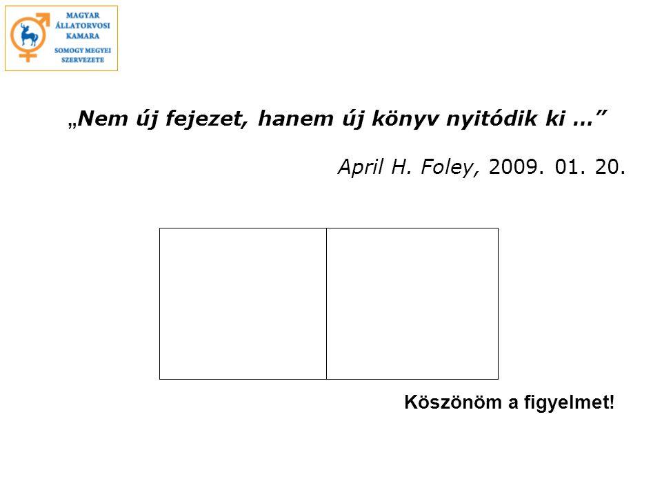 """""""Nem új fejezet, hanem új könyv nyitódik ki … . April H. Foley, 2009"""