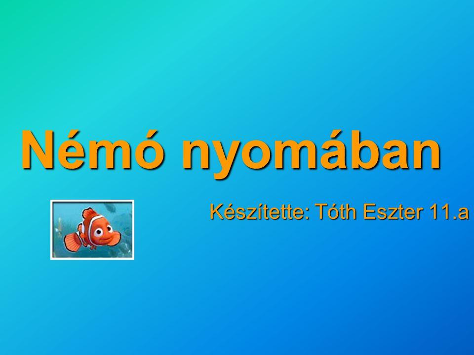 Készítette: Tóth Eszter 11.a