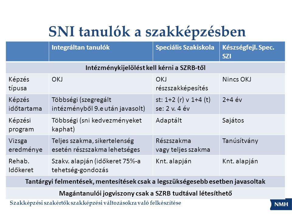 SNI tanulók a szakképzésben