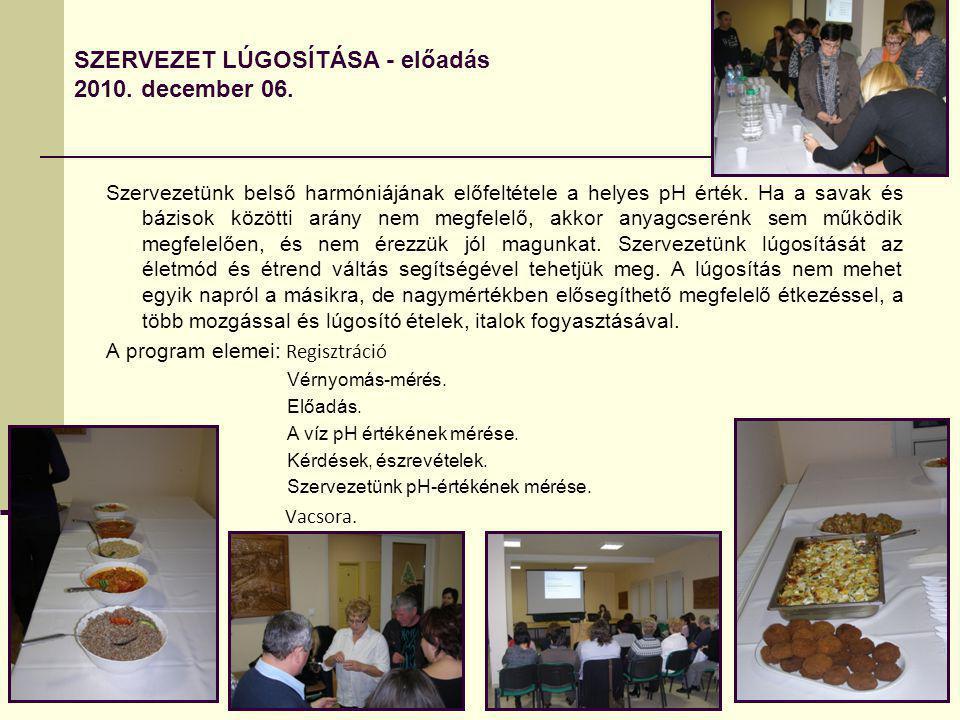 SZERVEZET LÚGOSÍTÁSA - előadás 2010. december 06.