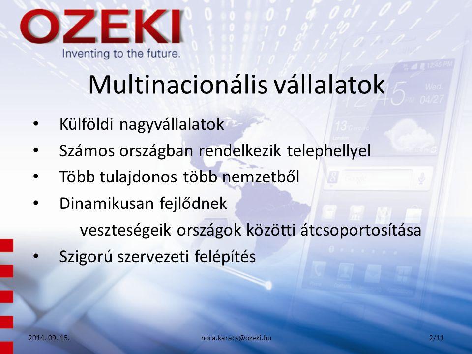 Multinacionális vállalatok