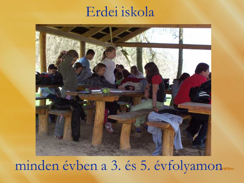 Erdei iskola minden évben a 3. és 5. évfolyamon