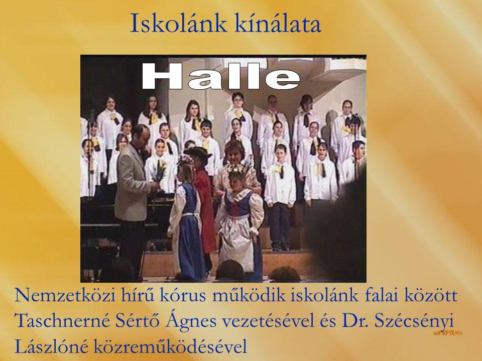 Iskolánk kínálata Halle