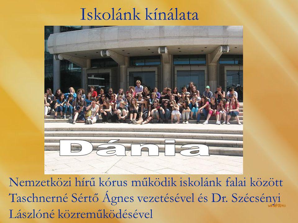 Iskolánk kínálata Dánia