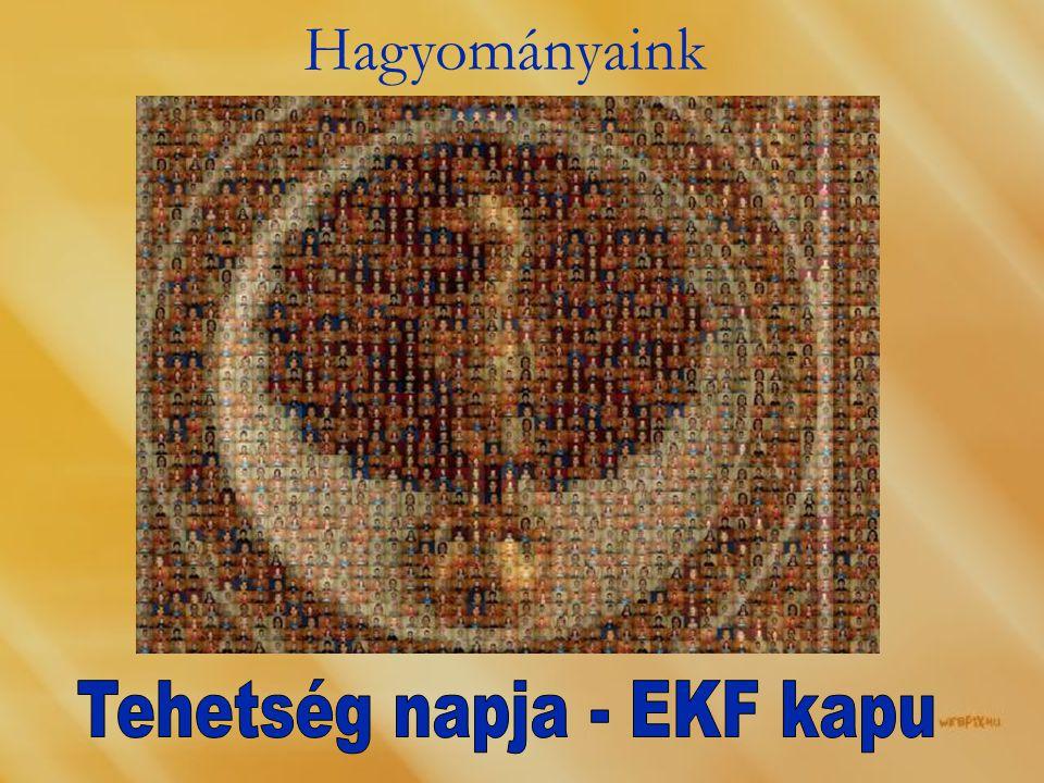 Tehetség napja - EKF kapu