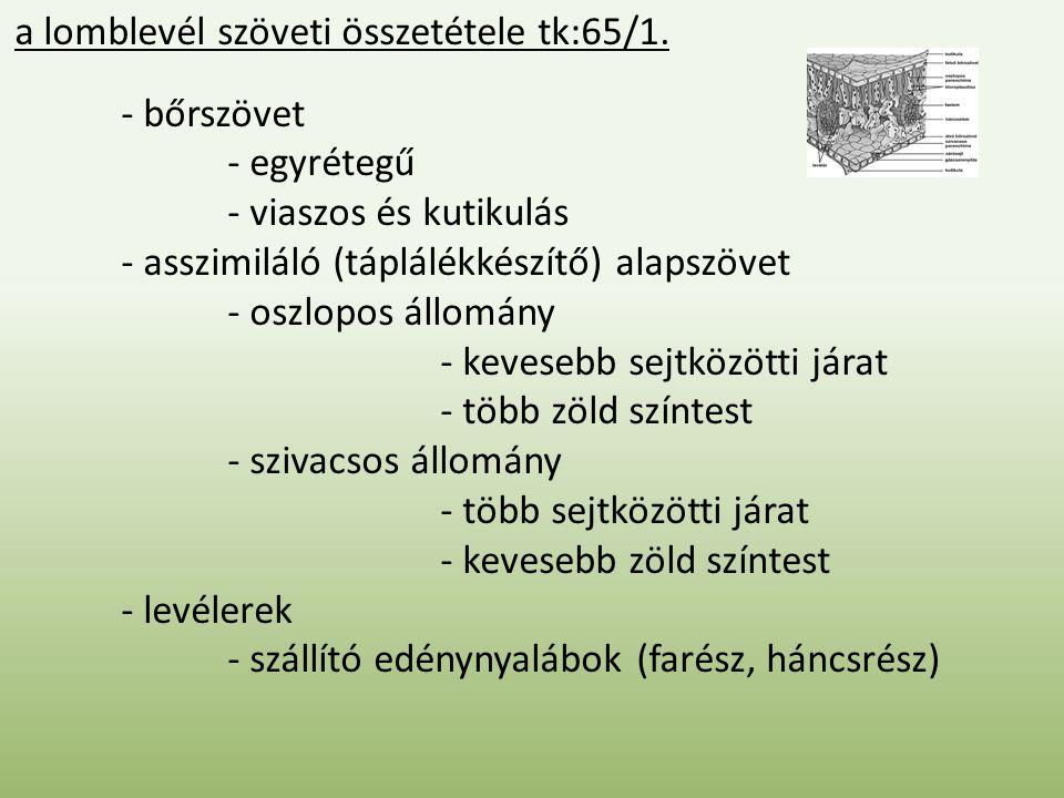 a lomblevél szöveti összetétele tk:65/1.