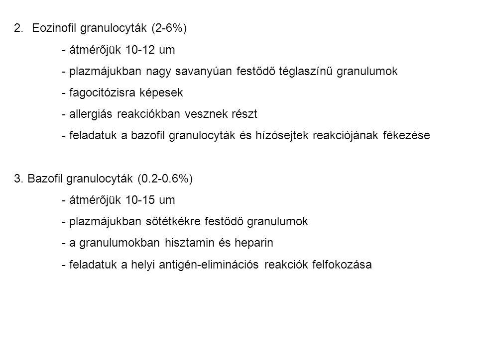 Eozinofil granulocyták (2-6%)