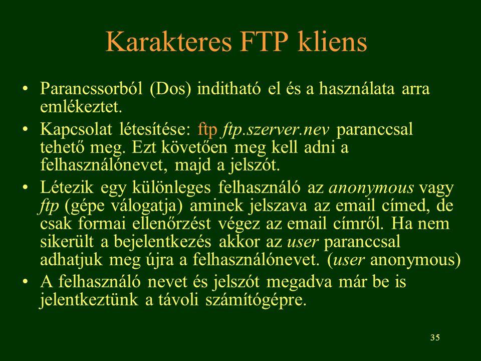 Karakteres FTP kliens Parancssorból (Dos) inditható el és a használata arra emlékeztet.