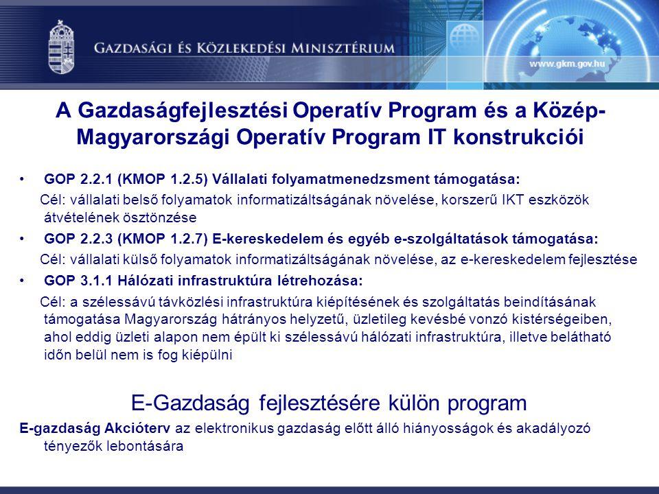 E-Gazdaság fejlesztésére külön program
